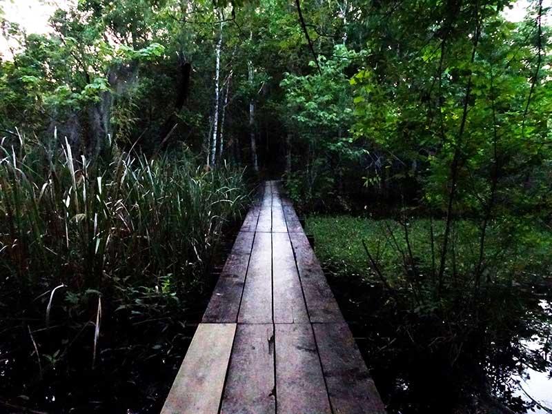 jean_lafitte_bridge